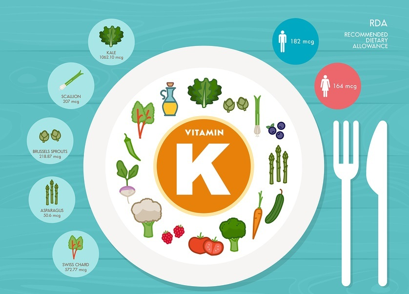 Vitamin K nutrition infographic with medical and food icons: diet healthy food and wellbeing concept