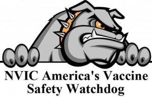 NVIC-Watchdog-300x191