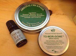 Kentucky Amish Man, Sam Girod was sentenced to 6 years in prison for making a harmless Chickweed Salve. (Image source)