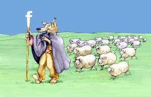 sheep-herd-wolf-shepherd-300x194
