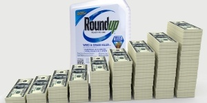 Big-Money-Stack-and-Roundup_1200x600