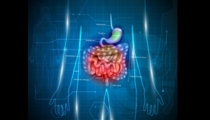 Gastrointestinal tract. Stomach small intestine and colon abstract blue technology background with lights and human silhouette.