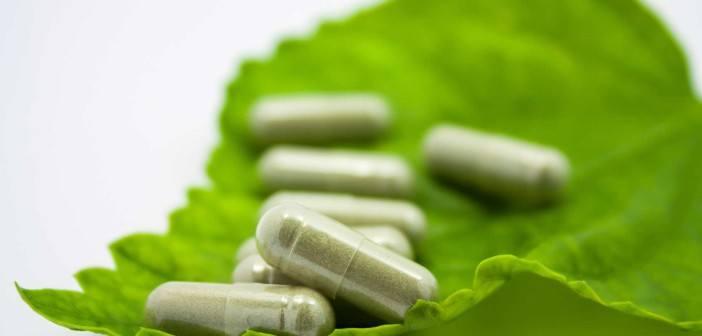 leaf-supplements-web-702x336