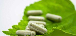 leaf-supplements-web