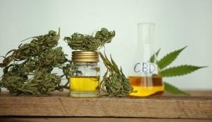 hemp medical cannabis cbd product oil  weed