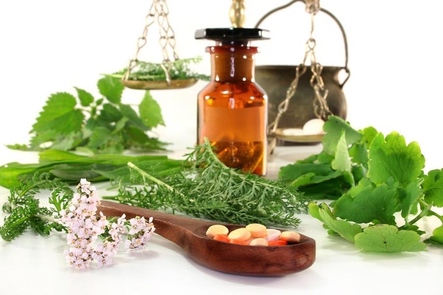 fresh medicinal herbs and herbal supplements photo