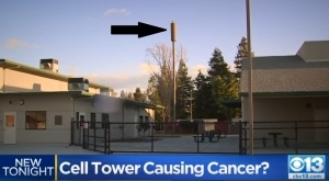 Weston Elementary Ripon California cell tower