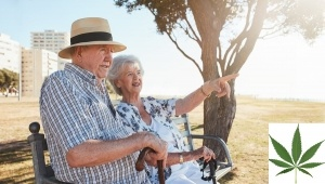Outdoor shot of a retired couple relaxing on a park bench with woman pointing at something interesting. Elderly man and woman sitting on a bench outdoors and enjoying the view.
