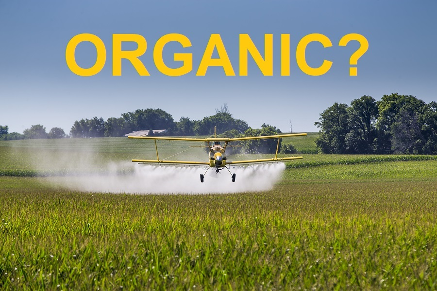 A crop duster applies chemicals to a field of vegetation photo.