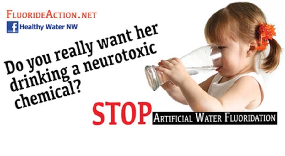 Fluoride Stop FB