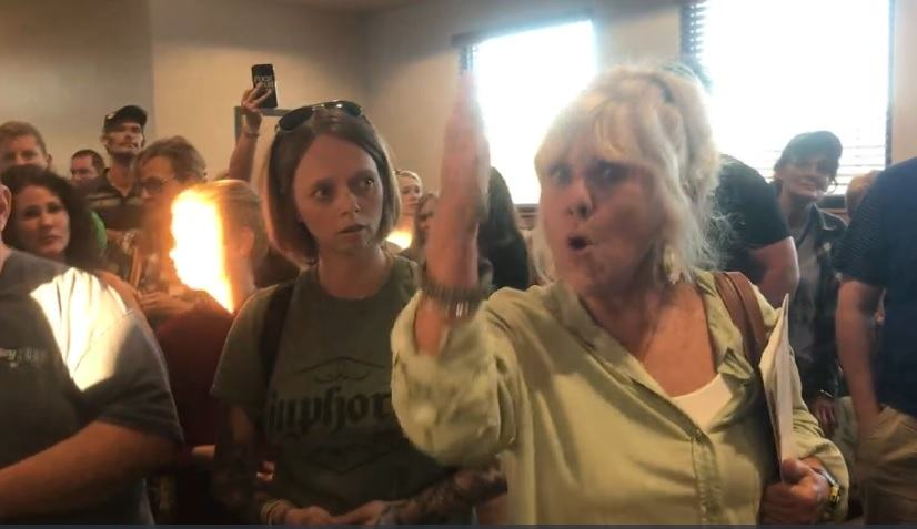 North Carolina Citizens Defy Proposed Mandatory Mask Law – City Council Stunned by Turn Out Backs Down Waynesville-City-Council-Meeting-on-Masks