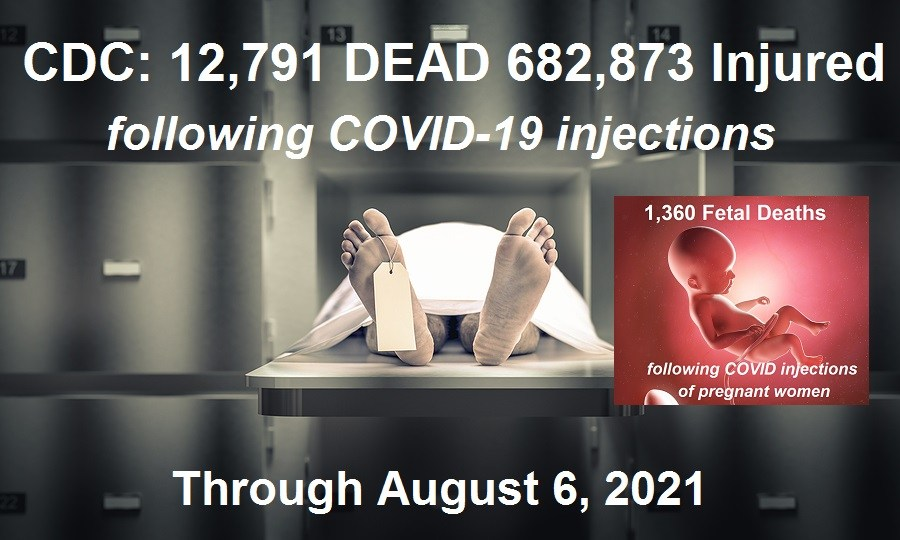 12,791 Dead 682,873 Injured