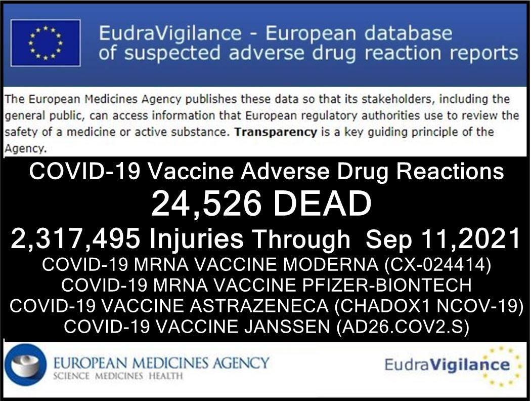 EMA Impftote Statistik